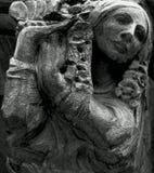 Плененная дама Стоковое Изображение RF
