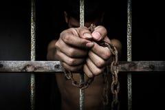 пленник стоковые фото