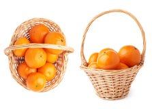 Плетеная корзина вполне множественных зрелых свежих сочных tangerines, состава изолированного над белой предпосылкой Стоковые Изображения RF