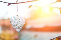 Плетеная смертная казнь через повешение сердца страны от ветви дерева красный цвет поднял Запачканный космос предпосылки и экземп Стоковые Фотографии RF