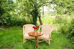 Плетеные стулья с таблицей в саде Стоковое Изображение