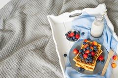 Плита бельгийских waffles с шоколадом и ягодами Стоковые Фото