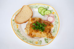 плита зажженная рыбами Стоковые Изображения RF