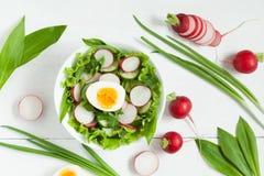Плита здорового сезонного салата Стоковая Фотография