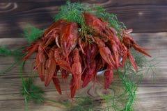 Плита красного цвета закипела раков с фенхелем на деревянной предпосылке Стоковые Изображения RF