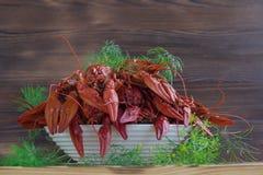 Плита красных раков с фенхелем на деревянной предпосылке Стоковое Фото