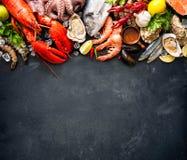 Плита морепродуктов стоковые фото