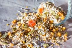 Плита домодельного muesli с семенами тыквы, пыли цветка, candied плодоовощ, замораживания - высушенного абрикоса Стоковые Изображения