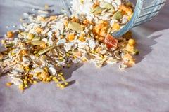 Плита домодельного muesli с семенами тыквы, пыли цветка, candied плодоовощ, замораживания - высушенного абрикоса Стоковое Изображение