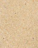 Плита от крупного плана песчаника Стоковое Изображение RF