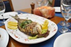 Плита рыб Стоковое фото RF