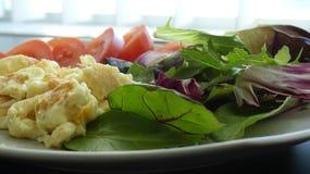 Плита салата взбитых яя Стоковое Изображение