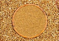 Плита семени кориандра и деревянных Стоковые Фотографии RF