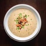 Плита супа гриба Стоковое Изображение