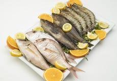 Плита сырых рыб и креветок изолированная на белизне Стоковая Фотография