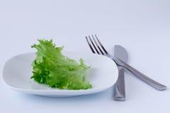 Плита с лист салата штепсельная вилка и нож против задней части белизны Стоковое фото RF