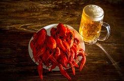 Плита с кипеть раками и стекло пива Стоковая Фотография