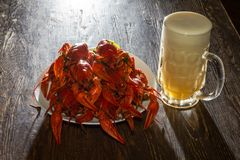 Плита с кипеть раками и стекло пива Стоковые Изображения RF