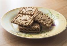 Плита с печеньями Стоковые Фотографии RF