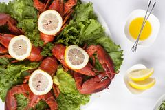 Плита с салатом Стоковые Фотографии RF