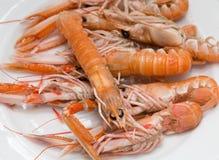 Плита crayfish Стоковое фото RF