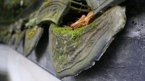 Плитка Стоковые Фотографии RF