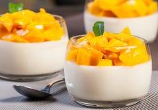 Плитка panna манго Стоковые Фотографии RF