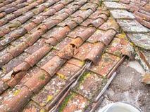 Плитки глины крыши Стоковые Изображения RF