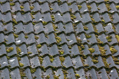 Плитки глины на обслуживании крыши верхнем neding стоковая фотография rf