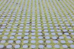 Плитки пола улицы Стоковое фото RF