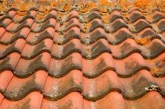 Плитки толя Стоковое Фото