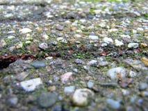 Плитки улицы с камешками закрывают вверх текстурированная предпосылка Стоковые Фото