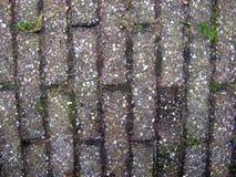 Плитки улицы с камешками закрывают вверх, текстурированная предпосылка Стоковое Фото