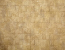 Плиточный пол/Старый Мир Стоковые Изображения RF