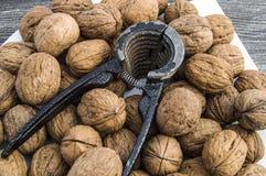 Плиты естественных грецких орехов и грецкого ореха crumbs плита a сухих грецких орехов, самых чудесных изображений грецкого ореха Стоковая Фотография