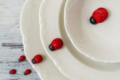 Плиты и Ladybugs фарфора Стоковое фото RF
