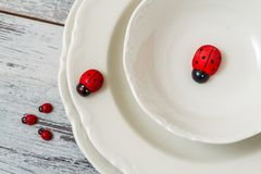 Плиты и Ladybugs фарфора Стоковое Изображение RF