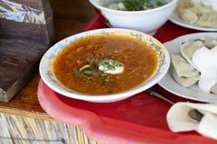 Плиты с супом и pelmeni Стоковые Изображения RF