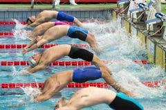 Пловец Simone Sabbioni во время седьмой конкуренции заплывания Милана di citta Trofeo Стоковые Фотографии RF