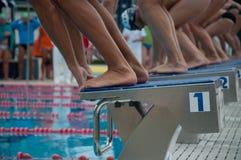 Пловцы готовые для того чтобы поплавать Стоковые Фотографии RF