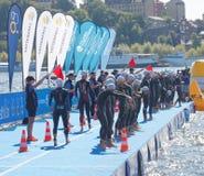 Пловцы женщины нагревая перед стартом Стоковое Изображение