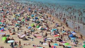 Пловцы на пляже в Голландии сток-видео