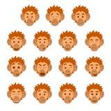 Плоские выражения стороны обезьяны Стоковые Изображения RF