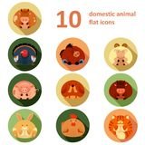 Плоские значки с животными Стоковые Фотографии RF