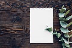 Плоский евкалипт положения разветвляет и дневник на деревянной предпосылке, взгляд сверху Насмешка вверх Стоковая Фотография