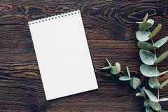 Плоский евкалипт положения разветвляет и дневник на деревянной предпосылке, взгляд сверху Насмешка вверх Стоковое Фото