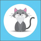 Плоский кот Стоковые Фото