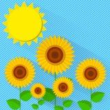 Плоский солнцецвет стиля Стоковая Фотография