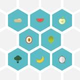 Плоский Litchi значков, Praties, капуста и другие элементы вектора Комплект плоских символов значков также включает джунгли, Melo Стоковые Фото