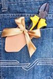 Плоскогубцы в карманн голубых джинсов Стоковое Изображение